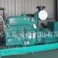 供应250KW上柴股份柴油发电机组-江苏玉柴发电机组有限公司